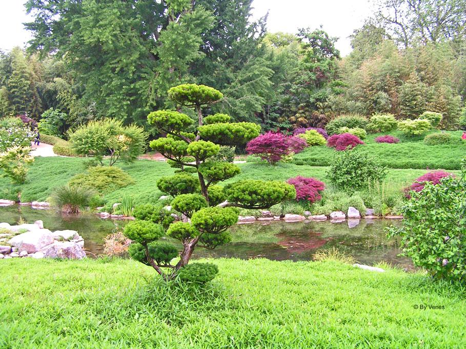 Japanse tuin la bambouseraie