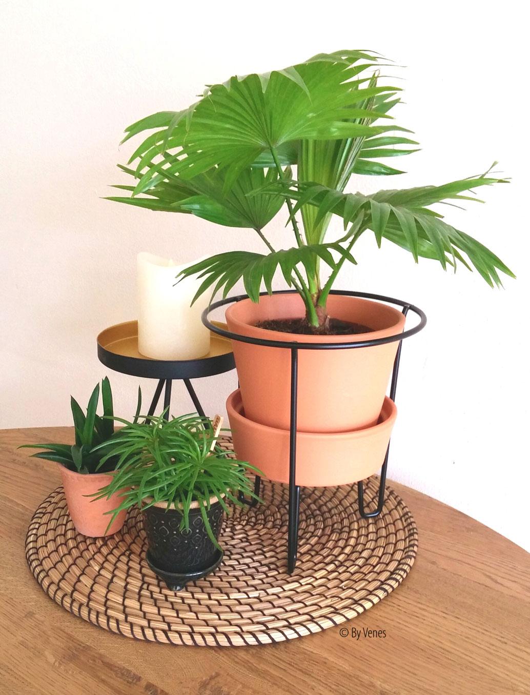 eettafel stylen met planten
